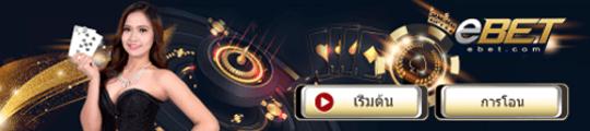 casino (คาสิโน) slot800