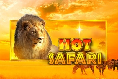 สล็อตHot Safari